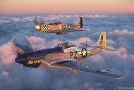 North American P-51D Mustangs  (FOMM43.03)